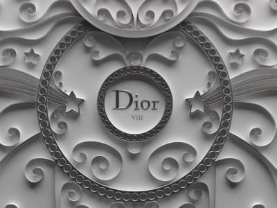 Dior VIII 2013